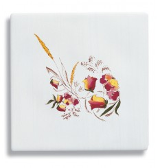 Carrelage mural en Faïence COMTESSE Décor Avesnes